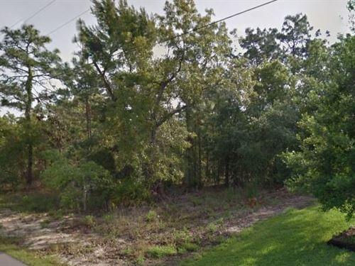 Hernando County, Fl $250,000 Neg : Weeki Wachee : Hernando County : Florida