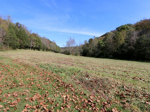 Home And 317 Ac In 4 Tracts : Cookeville : Putnam County : Tennessee