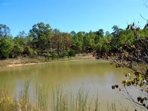 22 Acres, Large Pond, Shop/Garage : Elk Creek : Texas County : Missouri