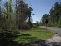 Water View Lot in Black Warrior Ba : Akron : Hale County : Alabama