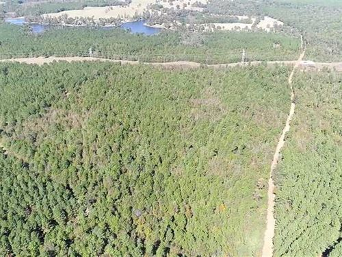 55 Acres of Hunting,Timber And Re : Laneville : Rusk County : Texas