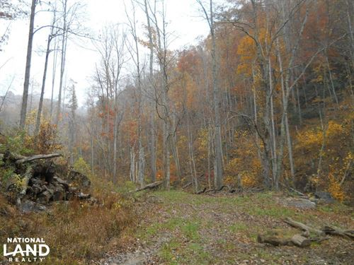 Hunting And Recreation on Aaron's : Bakersville : Mitchell County : North Carolina