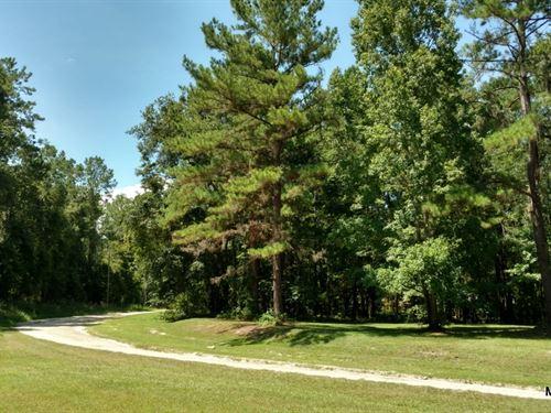 Woodland Glen - 4.39 Acres : Reddick : Marion County : Florida
