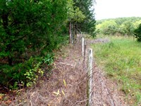 12.5 Acres, Old Home, With Electric : Manes : Wright County : Missouri