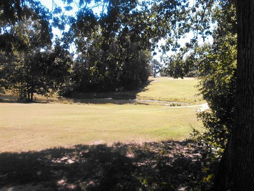 Golf Course Lot - Owner Financing : Chesterfield : South Carolina