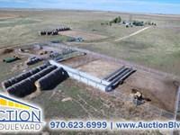 Windance Bison Ranch Auction : Bennett : Arapahoe County : Colorado