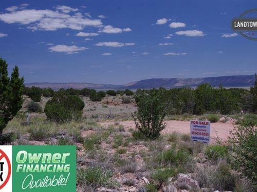 1.36 Acre Treed Lot In Seligman, Az : Seligman : Yavapai County : Arizona