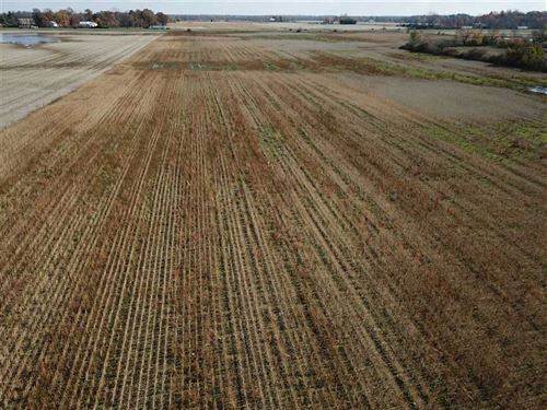 38 Acres of Tillable Land - Delawa : Chesterfield : Delaware County : Indiana