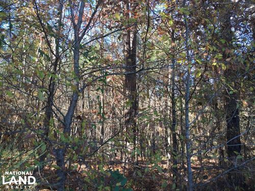Bowmantown Road Wooded Acreage With : Coldwater : Tate County : Mississippi