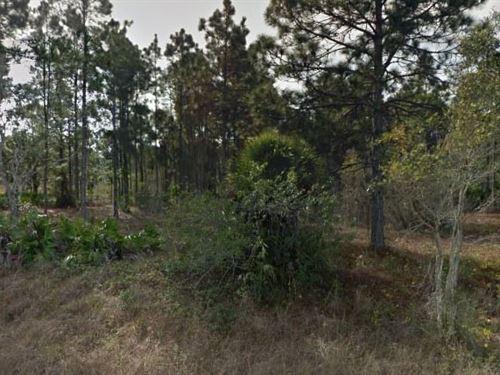 Lee County, Fl $15,000 Neg : Lehigh Acres : Lee County : Florida