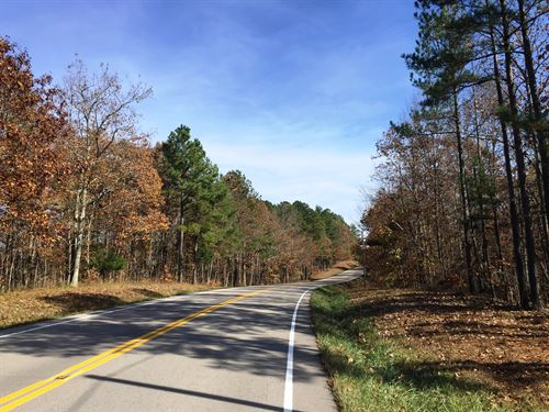 Green River Forest Se : Hohenwald : Wayne County : Tennessee