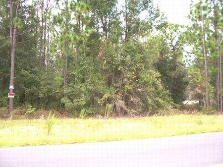 16 Acres (a-210) : Keystone Heights : Clay County : Florida