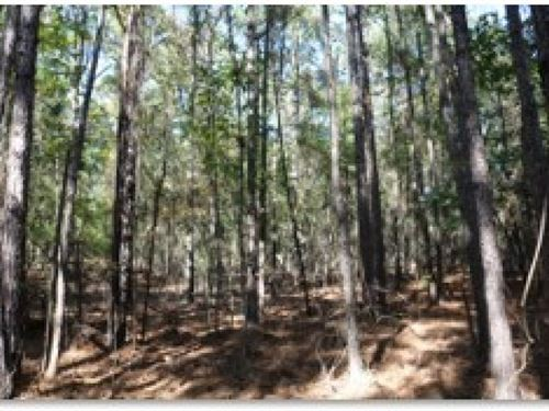 144.5 Acres In Attala County : Kosciusko : Attala County : Mississippi