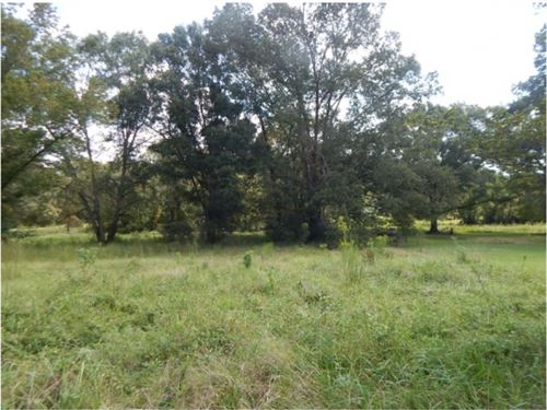 49 Acres In Hinds County Plus 8 Lot : Siwel : Hinds County : Mississippi