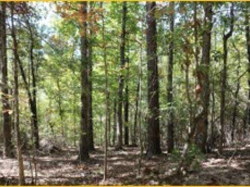 57.5 Acres In Montgomery County : Kosciusko : Montgomery County : Mississippi