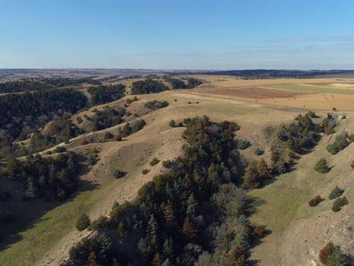 Custer County Mixed Bag Paradise : Arnold : Custer County : Nebraska