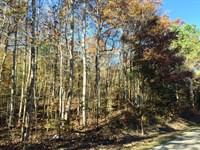 Loop Road Tract : Paris : Benton County : Tennessee