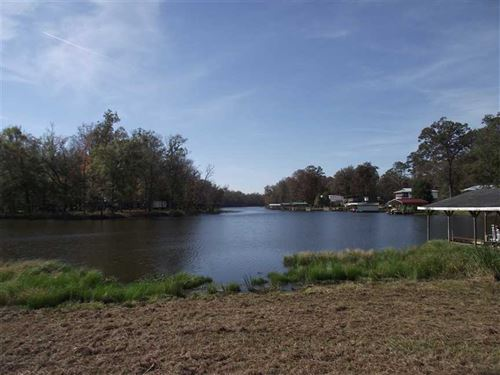 Waterfront Lot on Clear Creek With : Akron : Hale County : Alabama