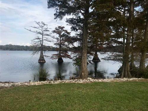 3 Acre, Beautiful, Residential : Saint Joseph : Tensas Parish : Louisiana