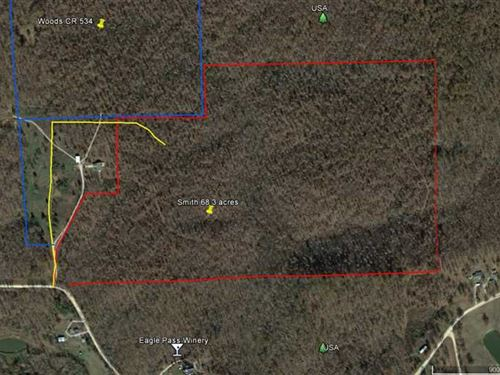 68.34 Acres For Sale in Butler Cou : Poplar Bluff : Butler County : Missouri