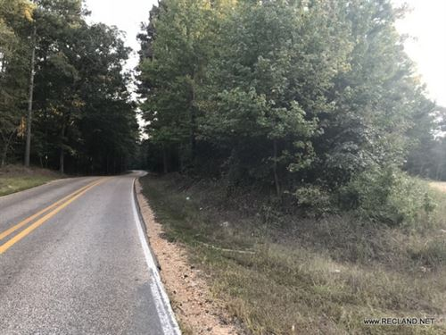 33 Ac - Pine Timberland : Strong : Union County : Arkansas