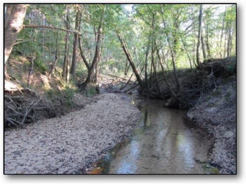 37.54 Acres In Webster County : Eupora : Webster County : Mississippi