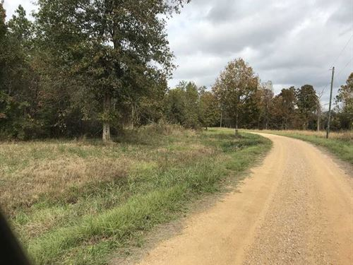 119 Acres Located in North Sum : Panola : Sumter County : Alabama