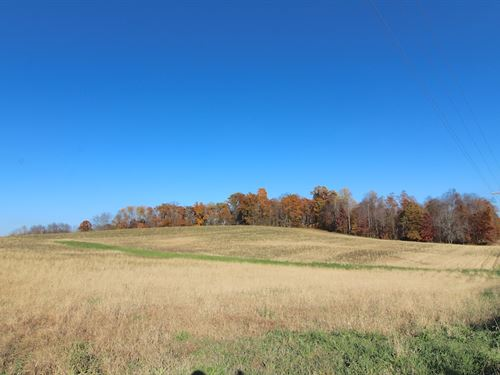 Laurel Hill Rd - 5 Acres : Thornville : Licking County : Ohio