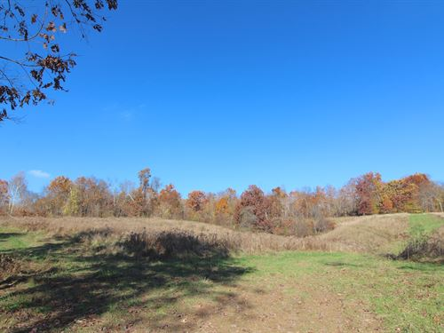Mt Hope Rd - 20 Acres : Thornville : Licking County : Ohio