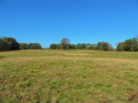 Cattle Ground With Home : Carnesville : Franklin County : Georgia