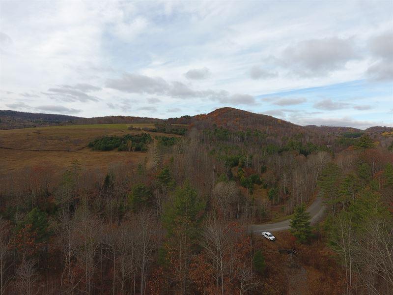 Parker Road Tract : Vershire : Orange County : Vermont