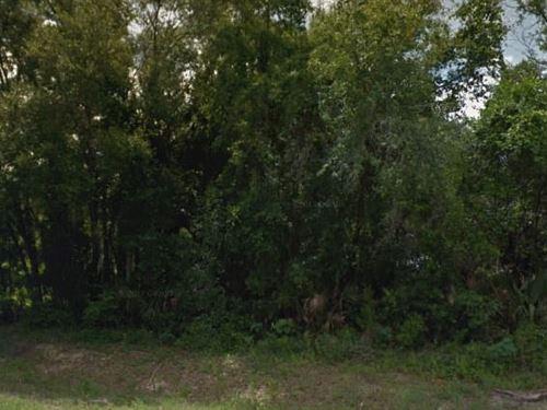 Putnam County, Fl $35,000 Neg : Palatka : Putnam County : Florida