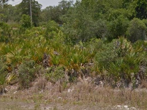 Highlands County, Fl $35,000 Neg : Lake Placid : Highlands County : Florida