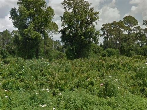 Highlands County, Fl $30,000 Neg : Avon Park : Highlands County : Florida