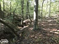 Westminster 29 Acre Tract : Westminster : Oconee County : South Carolina