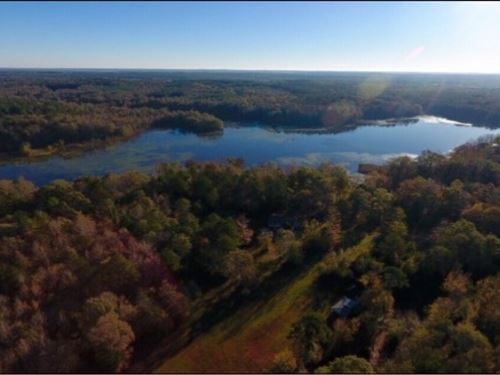 55 Acres In Newton County : Union : Newton County : Mississippi