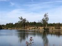 Milledgeville Farms : Milledgeville : Baldwin County : Georgia
