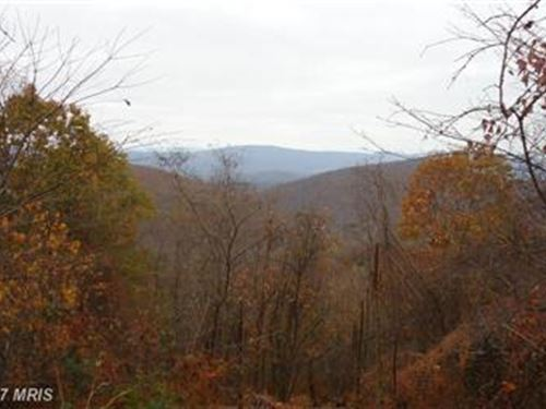160 Acres Of Wild And Wonderful Wv : Maysville : Grant County : West Virginia