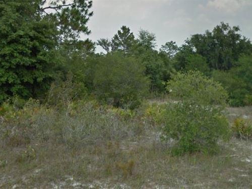 Polk County, Fl $70,000 Neg : Poinciana : Polk County : Florida