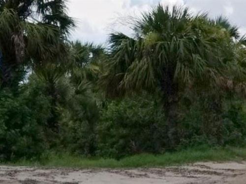 Brevard County, Fl $30,000 Neg : Cocoa : Brevard County : Florida