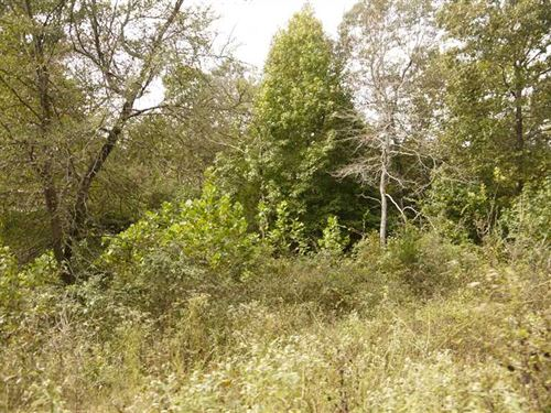 This is a 2 Acre Old Home Place WI : Lynn : Lawrence County : Arkansas