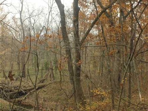 Johnson County - 5 Acre Wooded Lot : Chilhowee : Johnson County : Missouri