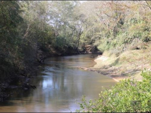 267 Acres In Newton County In Newto : Newton : Mississippi