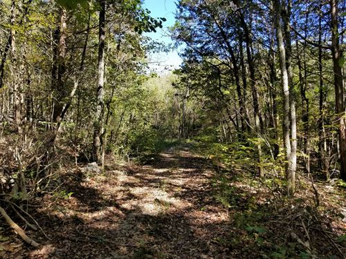 90+/-Acres Hunting, Atv Riding : Decherd : Marion County : Tennessee