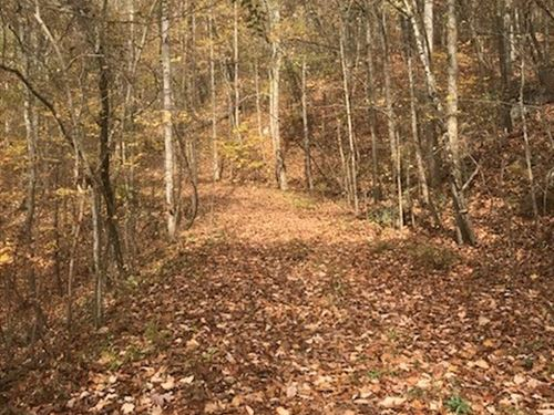 15.9+/-Acres Hunting And Lake View : Whitwell : Marion County : Tennessee