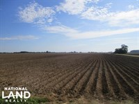 Prime Cotton And Soybean Farm : Dundee : Tunica County : Mississippi