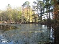 Martin Road Timber And Hunting : Winnsboro : Fairfield County : South Carolina
