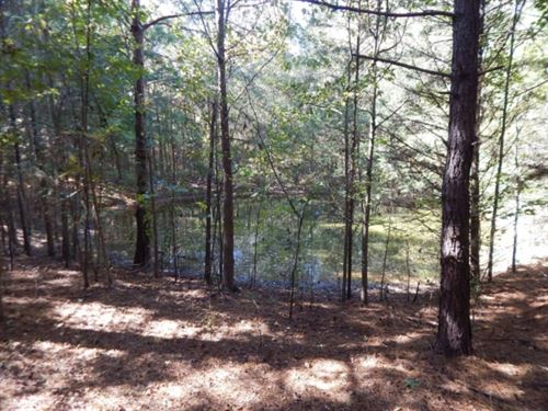 10 Acres In Madison County : Flora : Madison County : Mississippi