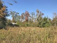 Pervy Campbell Road Tract : Ponce De Leon : Walton County : Florida