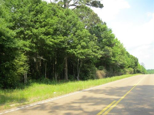 Excellent High Traffic Location : Centreville : Wilkinson County : Mississippi